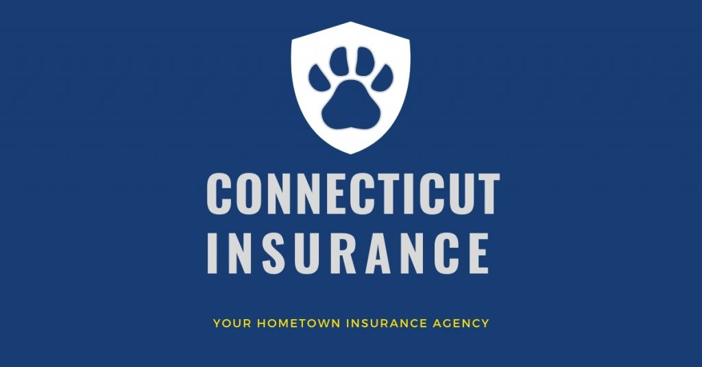 Featured image - Pet Insurance